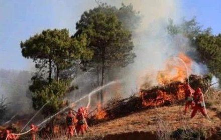 凉山又起大火致19名消防战士遇难!如何用保险保护高危职业者?-90保险
