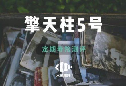 【定期寿险评分】横琴擎天柱5号-90保险